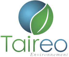logo-taireo.png